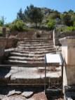 L'escalier salyen