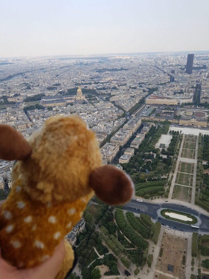 Cutie looking at Paris city