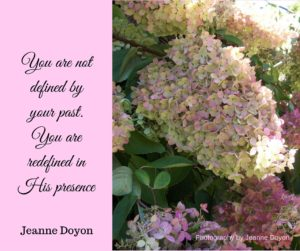 Contact Jeanne Doyon