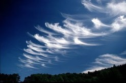 Mares Tails 5