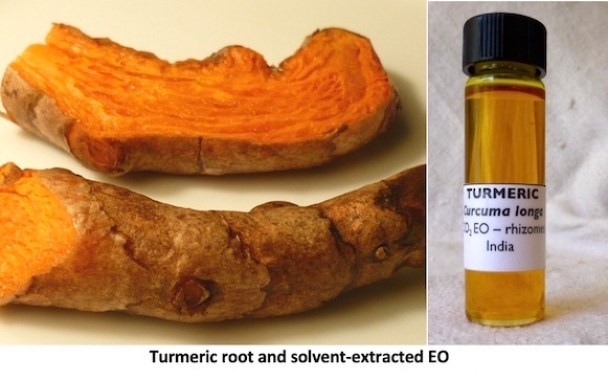 Photo of split root of Turmeric and a bottle of the CO2 showing good color, clarity.