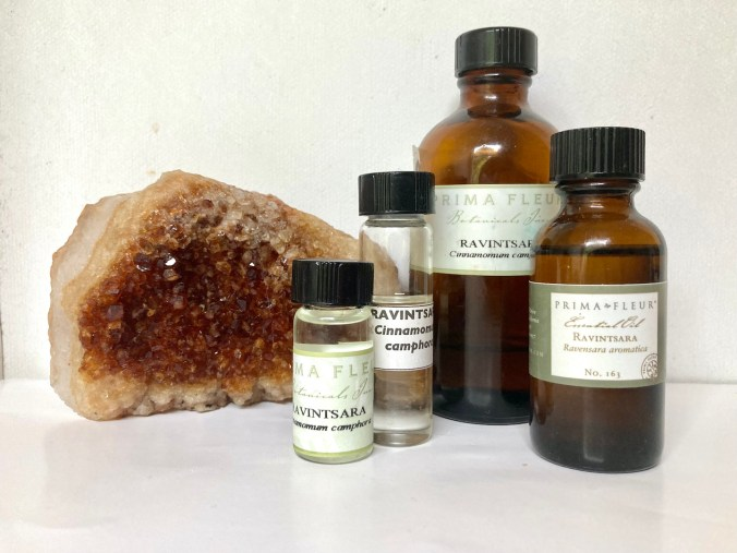 4 bottles of Ravintsara oil, in the author's possession.  Photo by JeanneRose