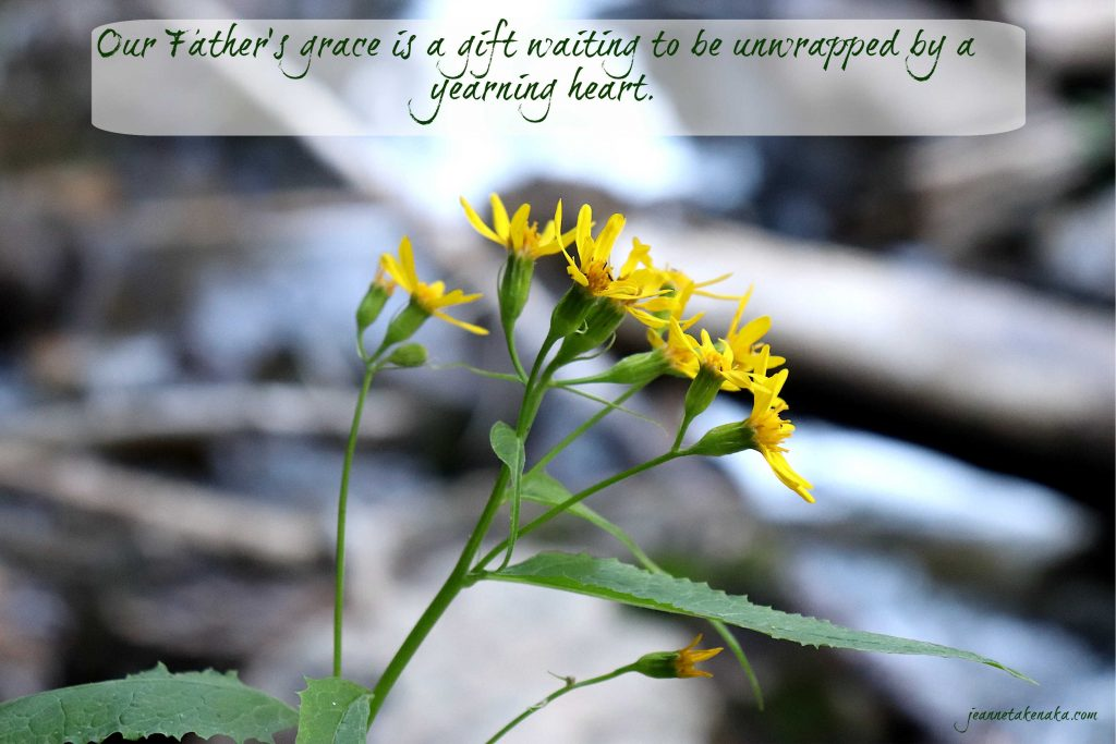 "Meme that says: ""Our Father's grace is a gift waiting to be unwrapped by a yearning heart."" on a backdrop of yellow flowers and a blurred image of a waterfall."