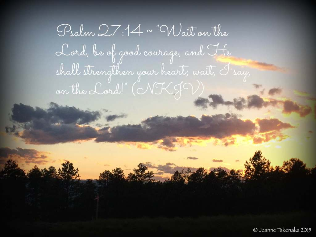 "A meme that says, ""Pssalm 27:14: 'Wait on the Lord, be of good courage, and He shall strengthen your heart; wait, I say, on the Lord!' (NKJV)"" on a backdrop of a sunset and silhouetted trees, a reminder that faith and trust in God help during waiting times"