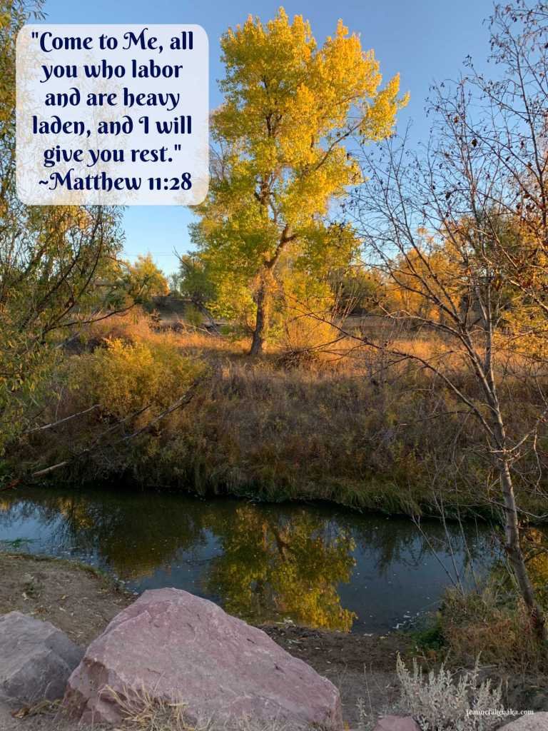 "A meme with the words: ""Come to Me all you who labor and are heavy laden, and I will give you rest."" Matthew 11: 28 on a backdrop of a tree reflecting in still waters. A reminder that we need rest and there is One who offers it to us."