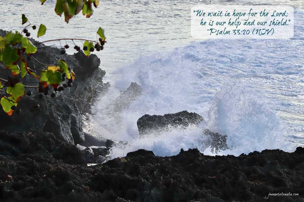 "Meme with the words, ""We wait in hope for the Lord; he is our help and our shield."" Psalm 33:20 (NIV) on a backdrop of waves crashing into rocks on a shoreline"