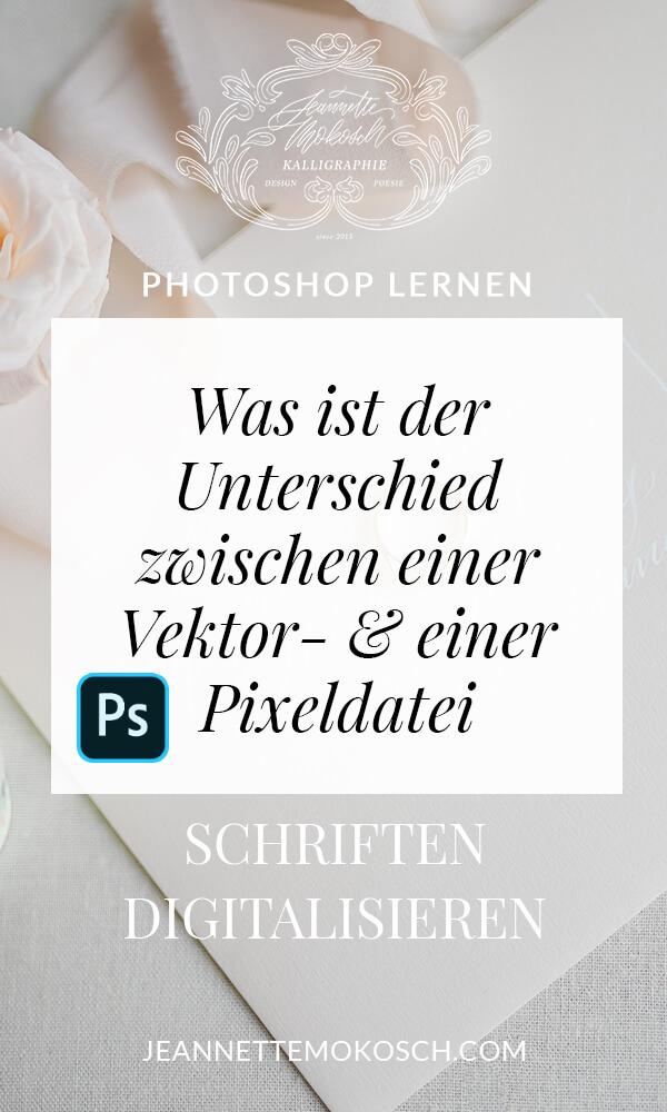 Pixelgrafik Vektorgrafik Vektordatei Illustrator Photoshop Rastergrafik Unterschied