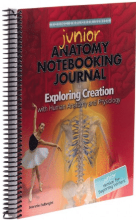 Anatomy & Physiology - Junior Journal Image