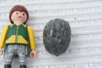 forme de noix paille de fer réf:noa1 25€