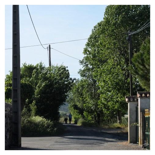 Alba-la-Romaine (07400 - Ardèche)