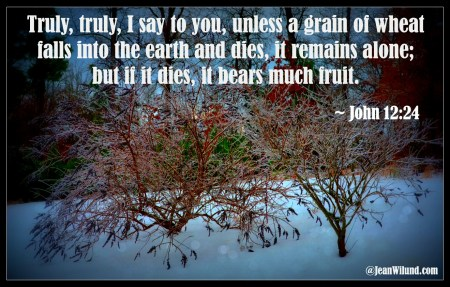 Dying is a bit like winter. Resurrection is coming just as sure as the Spring.