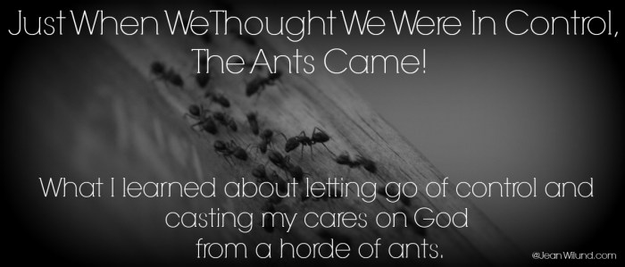 "Just When We Thought We Were In Control, The Ants Came (What I Learned About Letting Go of Control and Casting My Cares on God from a Horde of Ants) Featuring ""Cast My Cares"" by Finding Favour via @JeanWilund.com"
