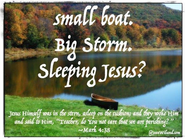 Need help in the storms of life? Ever feel like you're in a small boat, big storm and Jesus is asleep? Traci Burns understands and has a message of hope.