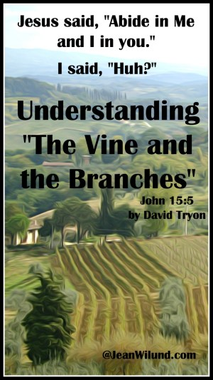 If you've ever wanted to understand Jesus' parable of the Vine and the Branches, you've found the right place. David Tryon explains it well. (www.JeanWilund.com)