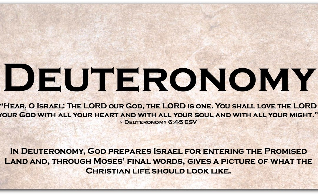 DEUTERONOMY ~ Dipping Our Toes into the Book of Deuteronomy