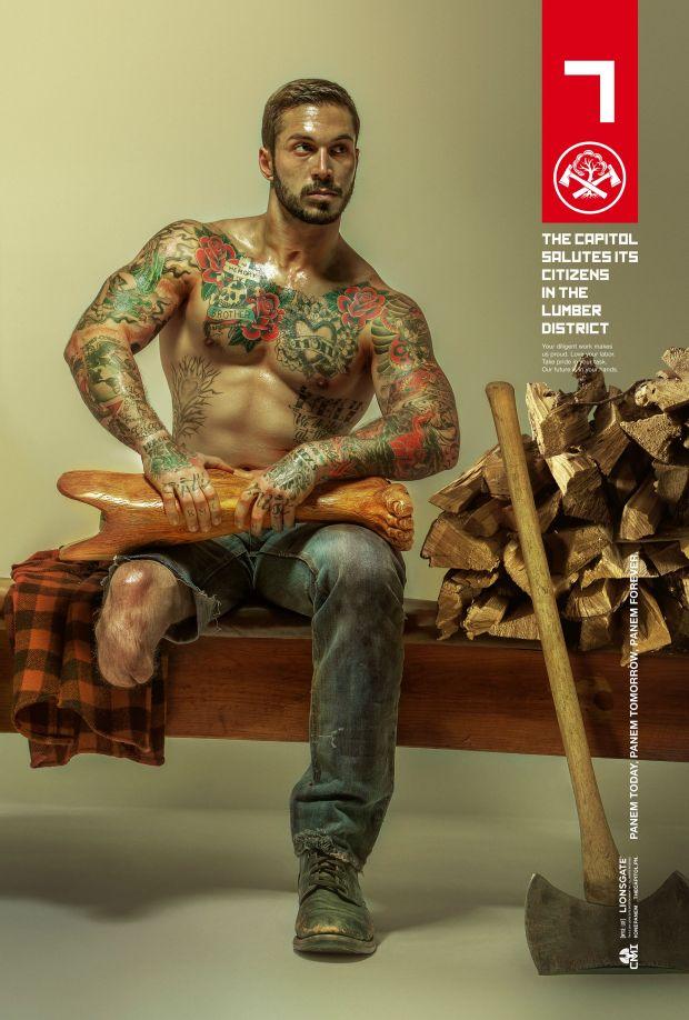 Mockingjay Poster - Lumber
