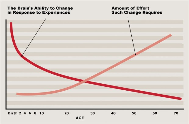 Brain Plasticity-Cost By Age