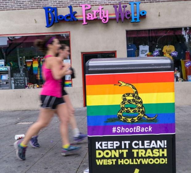 Gadsen LGBT Flag - Daily Wire photo