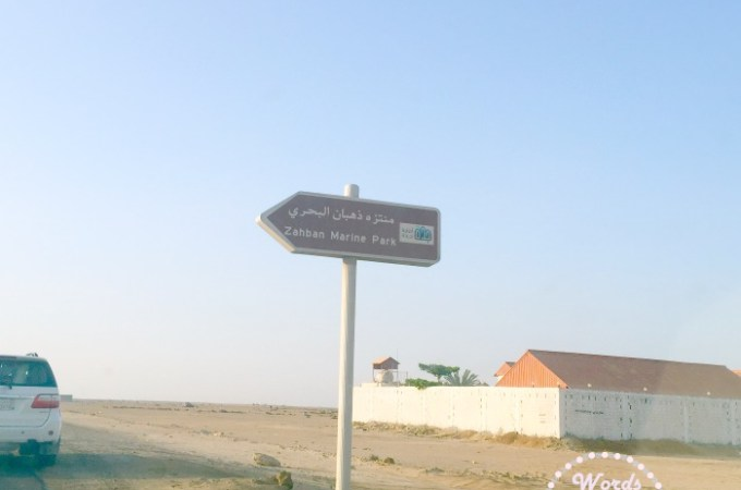 Dhahban Marine Park – Exploring Jeddah With Kids