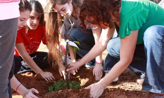 Reclaiming Service: Planting the Seeds of Jewish Values