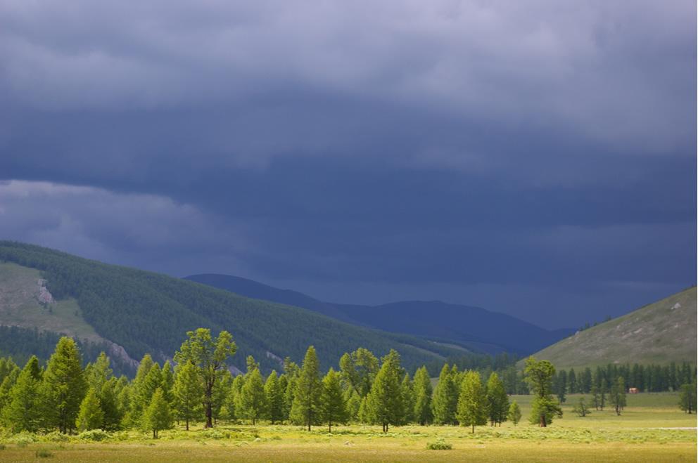 Mongolia przed burzą