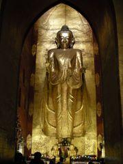 Złoty Budda - standard
