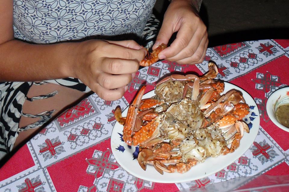 Rabbit Island - jedzenie
