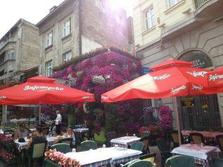 Belgrad - ulica Szkoderska