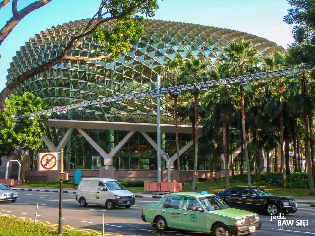 Singapur - Wielki Durian