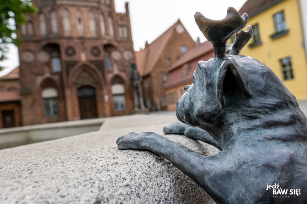 Brandenburg an der Havel - mops