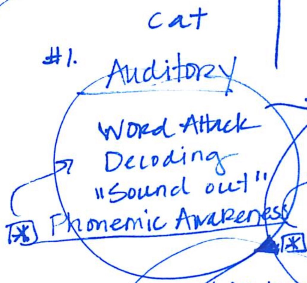Auditory processing illustration