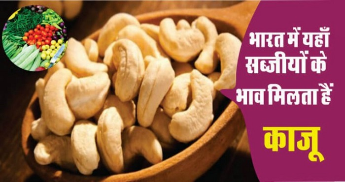 lowest cashew price in india