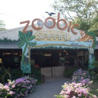 Zoobic Safari : Feeding the Lions in Subic Plus a Lot of Other Attractions
