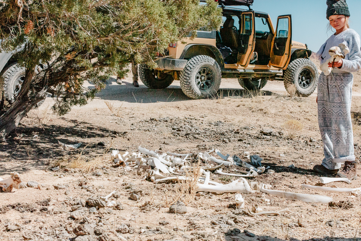 Native Jeeps Trailside Games