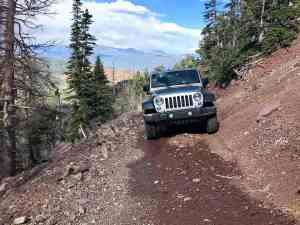 Jeep Tour Colorado by Native Jeeps Stock JK