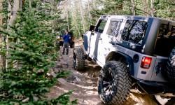Jeep Tour Colorado Native Jeeps Cascade Creek spotting