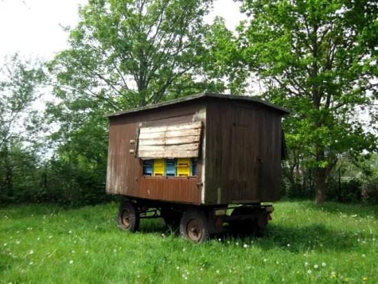 Unser neuer Bienenwagen