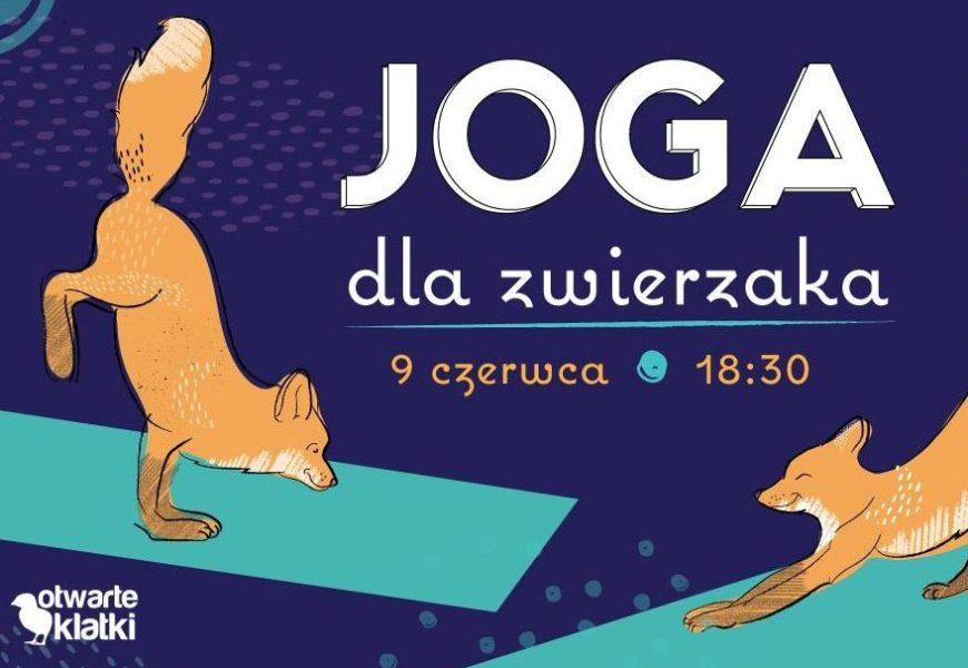 JOGA ON-LINE II charytatywne zajęcia dla Stowarzyszenia Otwarte Klatki