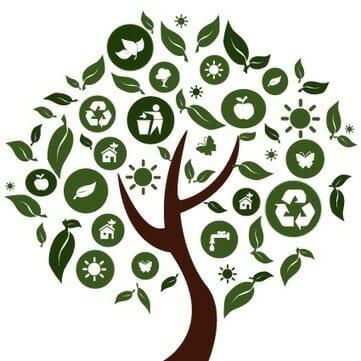 #6 Quand le marketing suit la tendance du durable