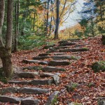 Fall foliage cover stairs from the old caravan route in the 1700s