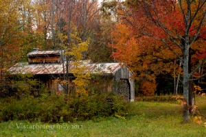 Fall foliage surrounds sugar shack