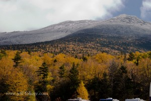 yellow foliage leading up to the alpine level of Mount Washington