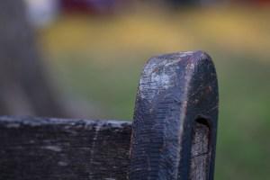 Houston Photographer – Park Bench