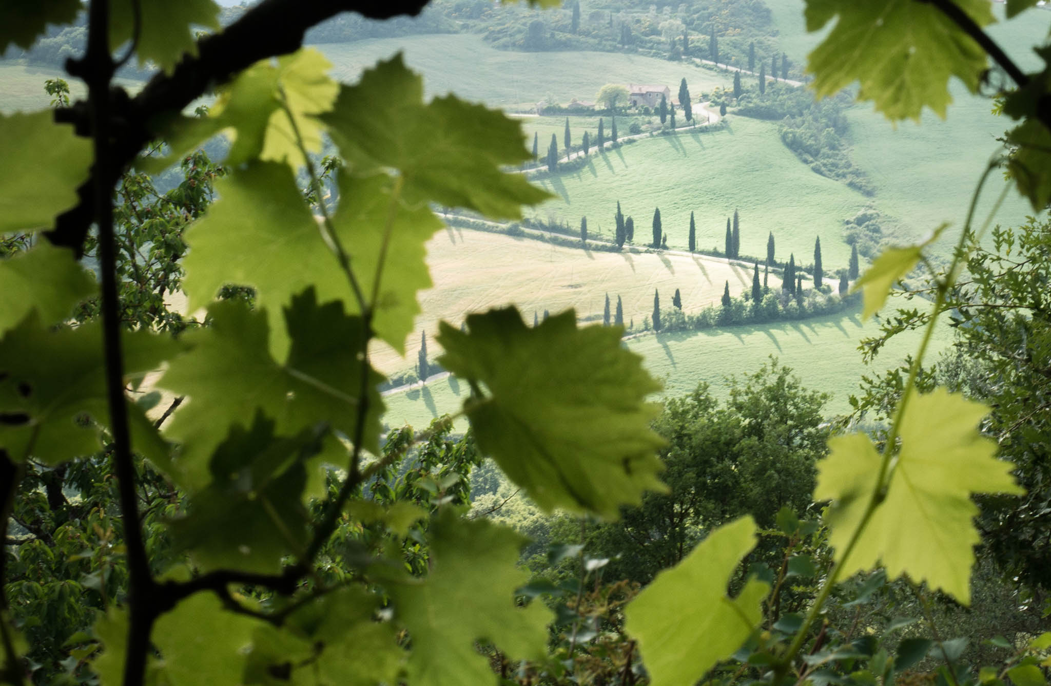 Val d'Orcia, Toscana