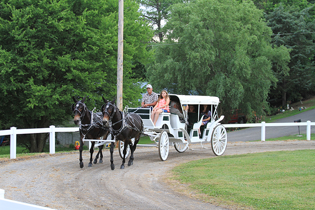 40th Annual Chestnut Hill Charity Horse Show  The Jefferson County Post