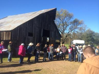 Ranch Tour at Guidici Ranch in Oroville, California. More than forty people gathered for a discussion of ecosystem processes including soil experts Dr. Christine Jones and Gabe Brown. Photo by Darby Heffner.