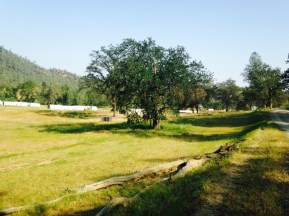 Red Bluff, ranches, holistic management