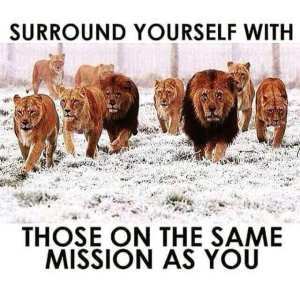 surround yourself on the same mission as you