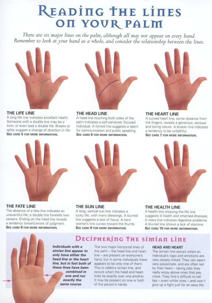 Simian Line What A Palm Reader Told Me About My Rare Hands