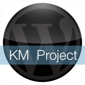 What is the WordPress KM Project?